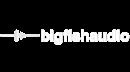 Big Fish Audio
